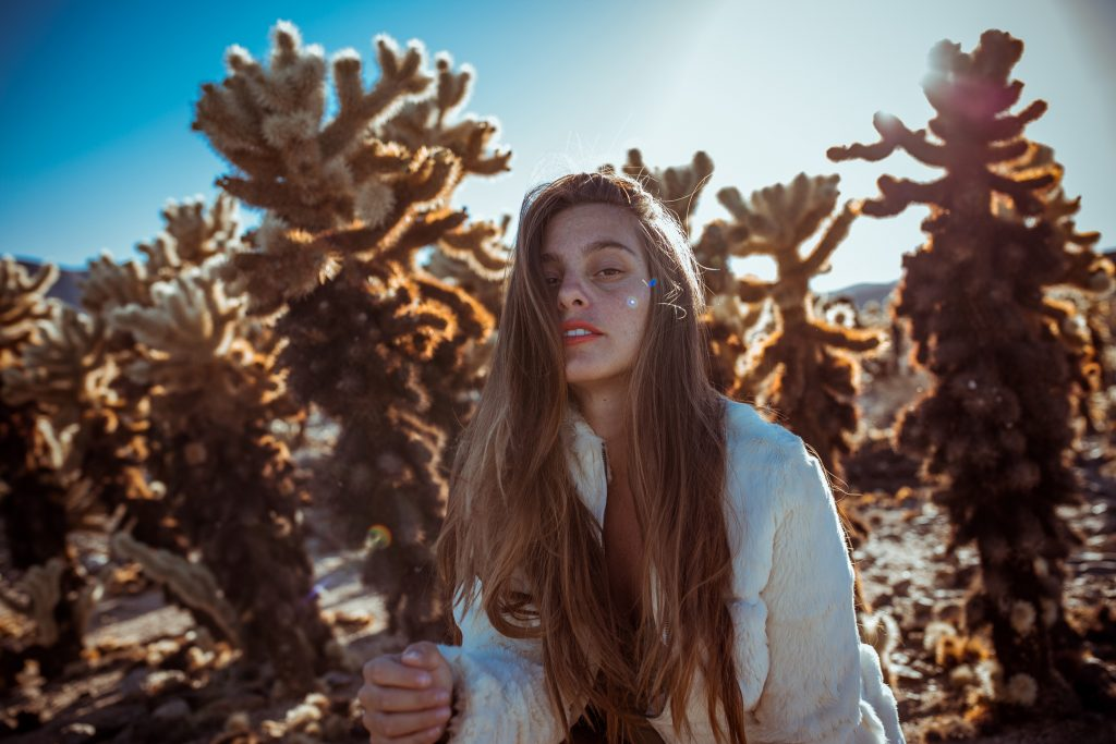 LIFESTYLE photos: Chollas, Joshua Tree