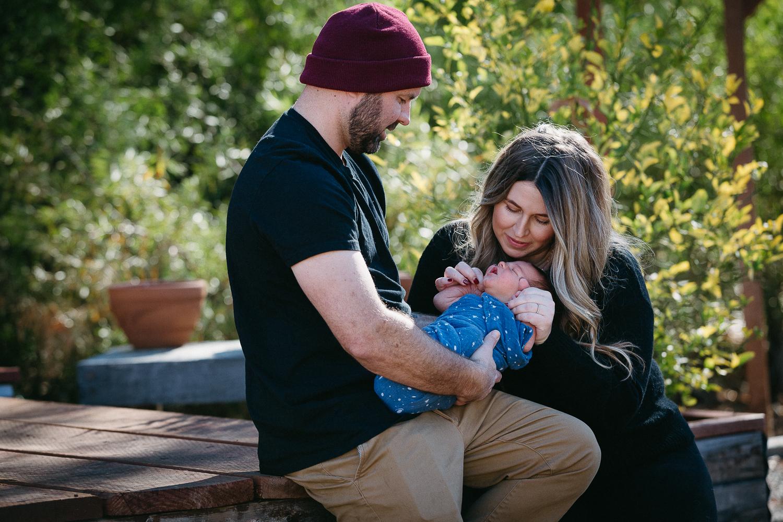 Vista Newborn Photos